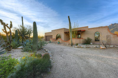 Tucson Single Family Home Active Contingent: 3871 E Marshall Gulch Place