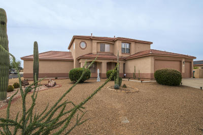 Pima County Single Family Home For Sale: 7029 W Prospect Valley Drive