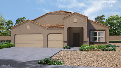 Marana Single Family Home For Sale: 9657 N Texas Ebony Lane