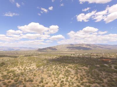 Tucson Residential Lots & Land For Sale: E Los Reales Road
