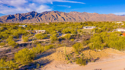 Residential Lots & Land For Sale: 4440 E Catalina Place