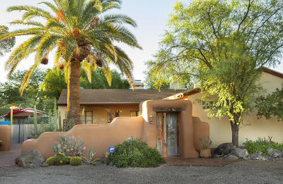 Single Family Home For Sale: 227 S Calle De Jardin