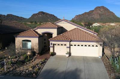Pima County Single Family Home Active Contingent: 3653 S Desert Cache Road