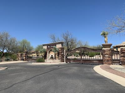 Oro Valley Single Family Home For Sale: 1218 W Casentino Pass