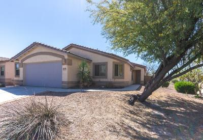 Marana Single Family Home Active Contingent: 11069 W Golden Willow Drive