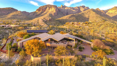 Pima County Single Family Home For Sale: 7403 N Secret Canyon Drive