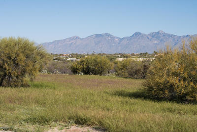 Residential Lots & Land For Sale: 11636 E Escalante Road