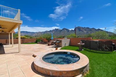 Tucson Single Family Home For Sale: 611 W Sendero Claro