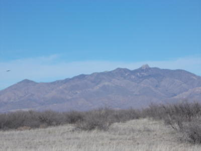 Cochise County Residential Lots & Land For Sale: Kansas Settlement