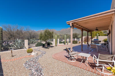Single Family Home For Sale: 4895 N Sabino Springs Drive