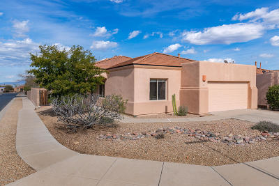 Tucson Single Family Home For Sale: 4212 W Golder Star Place