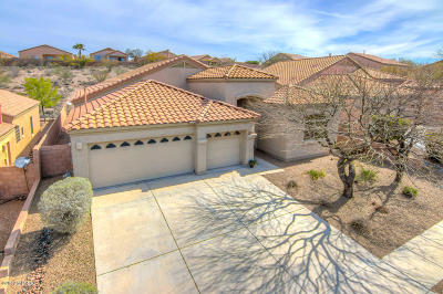 Vail Single Family Home For Sale: 13675 E Aviara Place