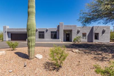 Tucson Single Family Home For Sale: 6938 W Calla Drive