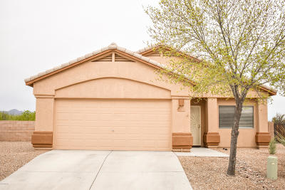 Marana Single Family Home Active Contingent: 12668 N Rodeo Land Avenue