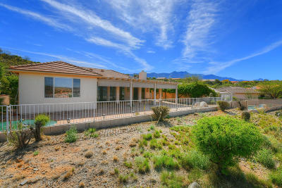 Saddlebrooke Single Family Home Active Contingent: 37172 S Highland Ridge Drive