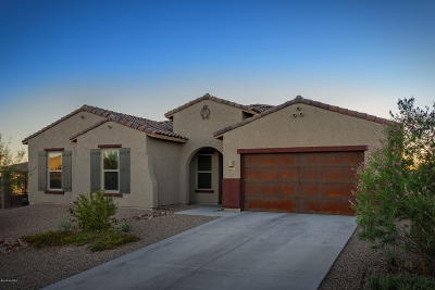 Oro Valley Single Family Home Active Contingent: 10955 N Delphinus Street