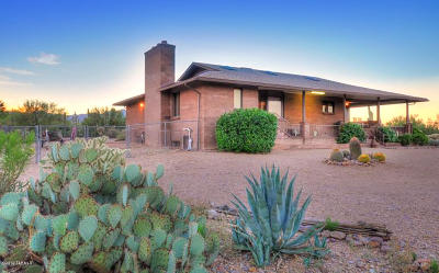 Tucson Single Family Home For Sale: 3375 W Goret Road