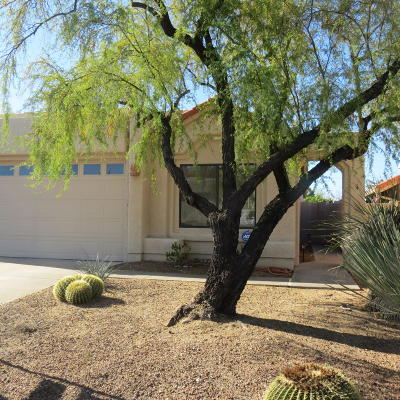 Tucson Single Family Home For Sale: 230 E Highcourte Lane