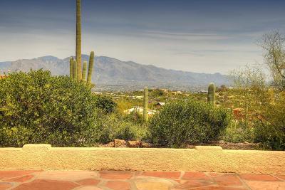 Tucson Single Family Home For Sale: 5600 W Placita Del Risco
