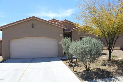 Pima County Single Family Home For Sale: 2977 W Mountain Dew Street