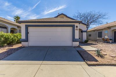 Pima County Single Family Home For Sale: 7812 S Castle Bay Street