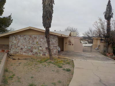 Rio Rico Single Family Home For Sale: 1185 Avenida Gandara