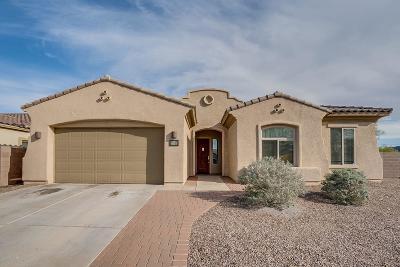 Tucson Single Family Home For Sale: 7822 N Blakey Lane