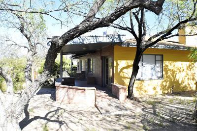 Tucson Single Family Home For Sale: 1104 E Waverly Street