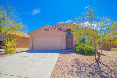 Vail Single Family Home Active Contingent: 13140 E Mesquite Flat Spring Drive