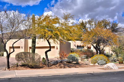 Tucson Single Family Home For Sale: 6165 N Via Tres Patos
