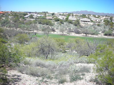 Tucson Residential Lots & Land For Sale: 11035 N Stargazer Drive #69