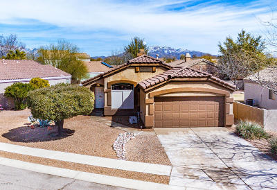 Single Family Home Active Contingent: 2356 N Emerald Lake Court