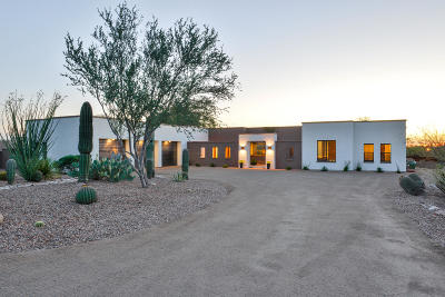 Pima County, Pinal County Single Family Home For Sale: 5961 N Camino Padre Isidoro