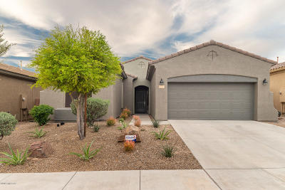 Marana Single Family Home For Sale: 12717 N Gentle Rain Drive
