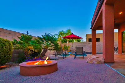 Single Family Home For Sale: 12976 N Ocotillo Bluff Place