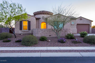 Oro Valley Single Family Home For Sale: 13075 N Ballcourt Lane