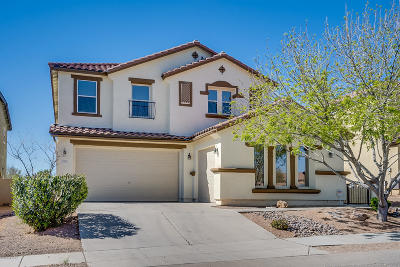 Sahuarita Single Family Home For Sale: 779 W Calle La Bolita