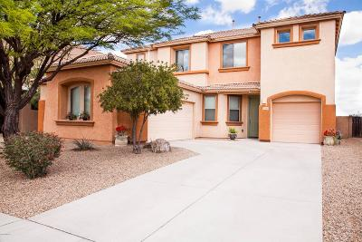 Pima County Single Family Home For Sale: 7103 S Valley Stream Drive