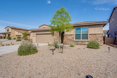 Oro Valley Single Family Home For Sale: 11778 N Key Lime Place