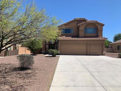 Pima County Single Family Home For Sale: 4341 S Camino De Oeste