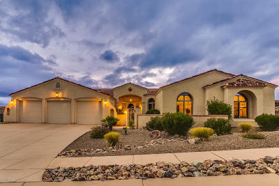 Oro Valley Single Family Home For Sale: 10889 N Pusch Ridge View Place