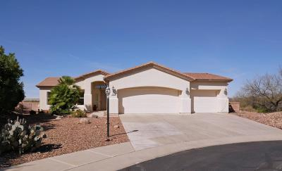 Green Valley Single Family Home For Sale: 1579 N Sage Sparrow Road