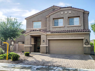 Marana Single Family Home For Sale: 8796 W Moon Spring Road