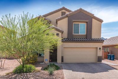 Marana Single Family Home For Sale: 8983 W Twin Springs Drive