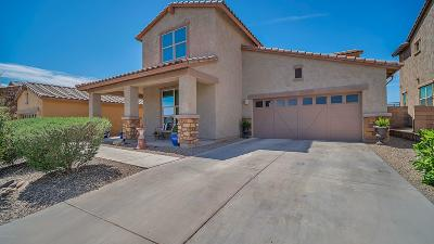 Oro Valley Single Family Home For Sale: 2269 W Tangor Place