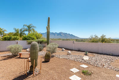 Oro Valley Single Family Home Active Contingent: 2033 W Three Oaks Drive