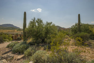 Tucson Residential Lots & Land For Sale: 3641 W Eagles View Place #5