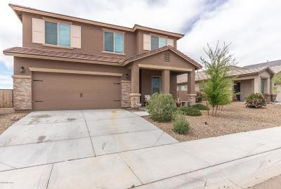 Marana Single Family Home For Sale: 14147 N Stone Pendant Way