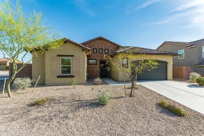 Marana Single Family Home For Sale: 5445 W Thornscrub Drive
