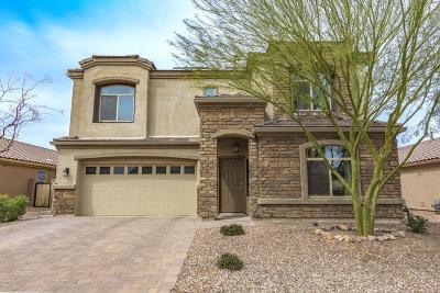 Marana Single Family Home For Sale: 8776 W Saguaro Moon Road
